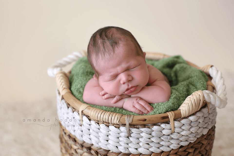 newborn pictures victoria - baby david basket