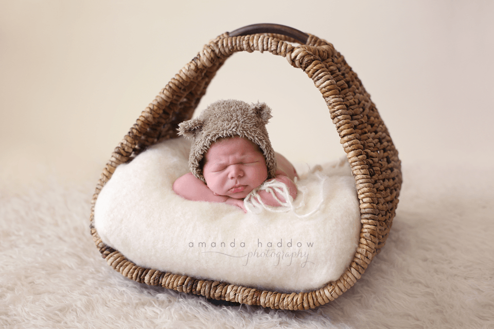 newborn pictures victoria - baby david basket2