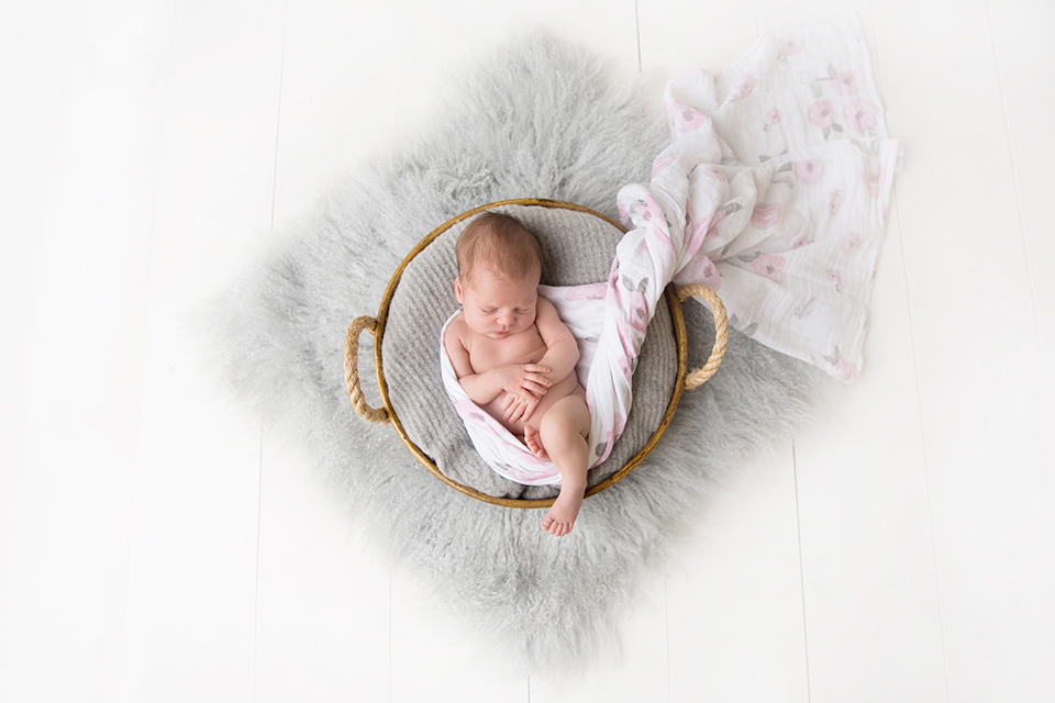 newborn baby in a basket